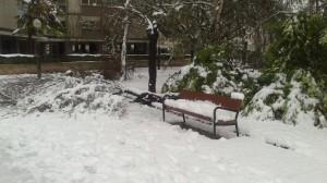 Imagen de la última nevada