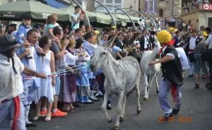 atea burros