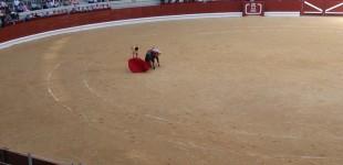Vitoria decidirá en una consulta popular si hay o no toros en La Blanca