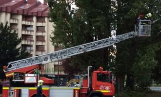 Los bomberos rescatan a un gato y buscan a cinco personas en sus respectivos domicilios