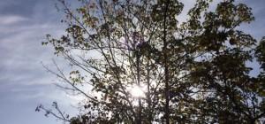 octubre calor