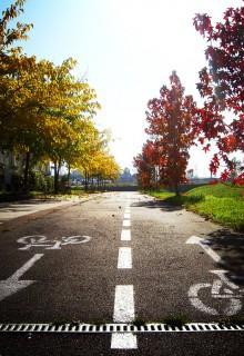 10 razones por las que aparcar el coche y ponerte a pedalear en Gasteiz