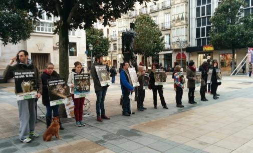 AnimaNaturalis protesta en Vitoria contra el uso de pieles