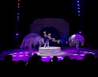 "Vitoria recibe al ""Circo Alegría on Ice"""