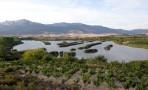 Álava controlará las especies invasoras y mejorará las riberas de los ríos