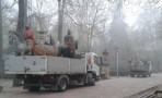 Los Reyes Magos ya están en Vitoria-Gasteiz