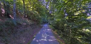 Carretera entre Ullibarri y Okina (Google Maps)