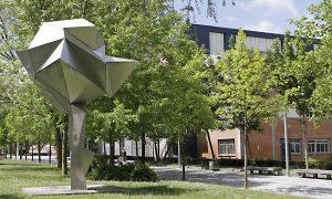 Campus de Álava nuevos grados