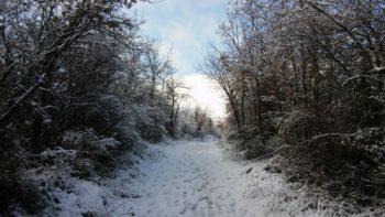 Vitoria-Gasteiz amanece con un fino manto de nieve