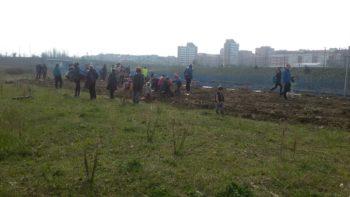 Zabalgana acoge una plantación popular por el Euskera