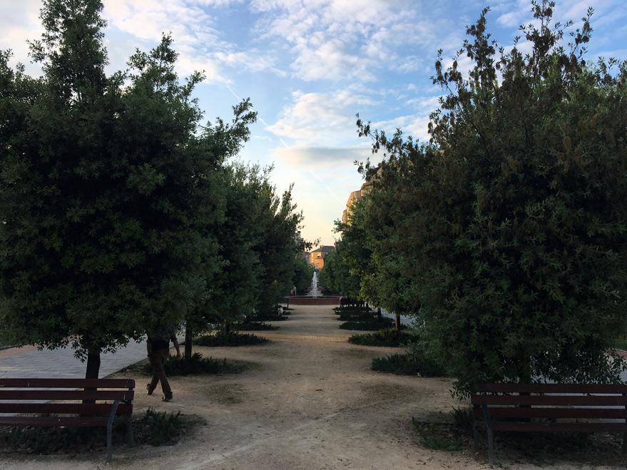 Aspecto actual de los árboles del Parque del Norte