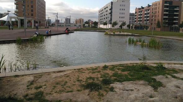 estanque parque del este