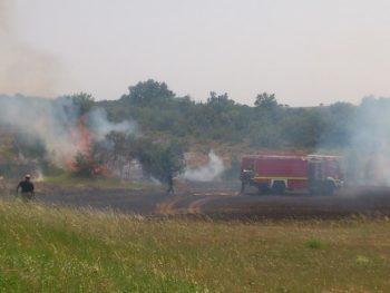 Arden 15.000 metros cuadrados en un fuego provocado por una cosechadora