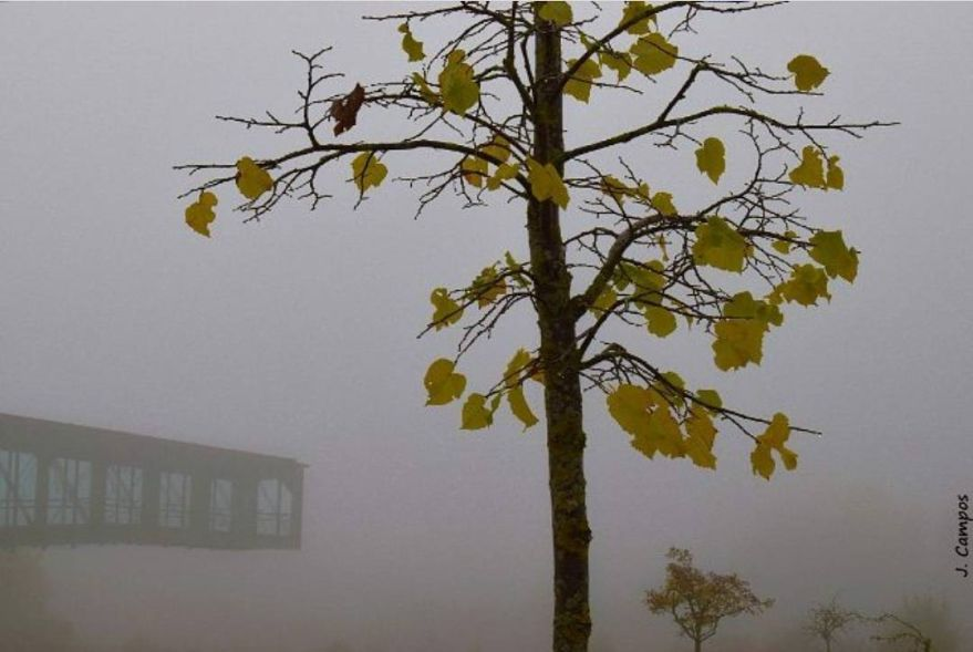 niebla-ataria-vitoria