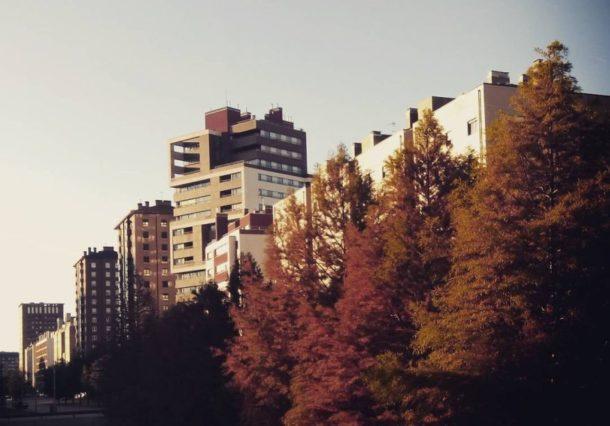 Vitoria-Gasteiz se coloca el filtro #otoño