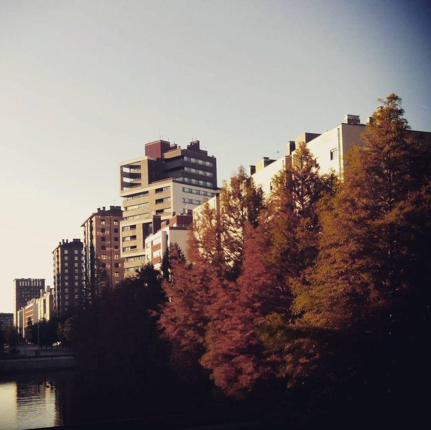 otoño-en-vitoria-salburua