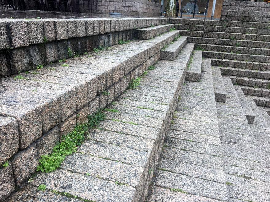 plaza de los fueros hierba