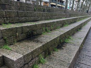 plaza de los fueros hierbas