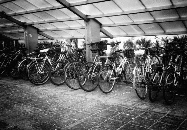 Vitoria-Gasteiz vista desde una bici: ¿Pedaleamos?