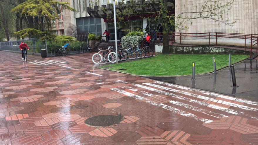 """""""El paseo de la Florida es peatonal: la señalización ciclista buscaba ordenar el espacio"""""""