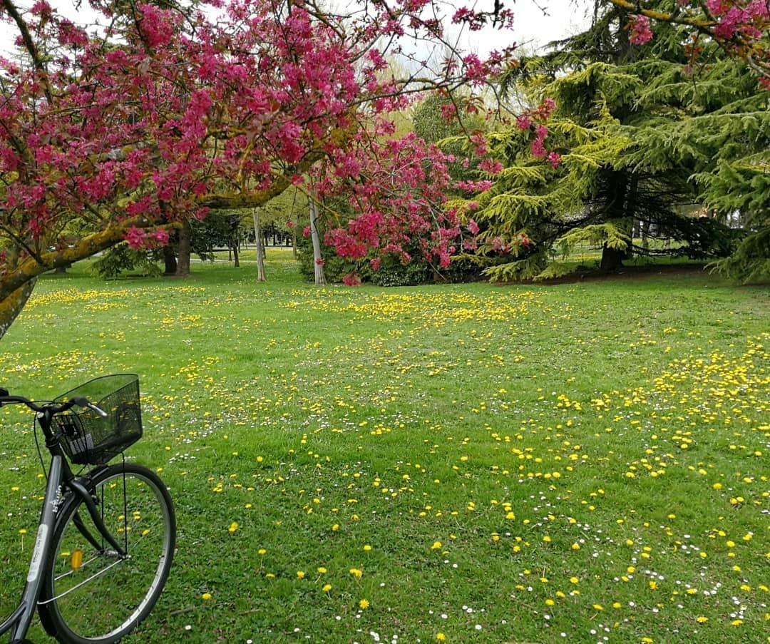 bicicletas en Vitoria