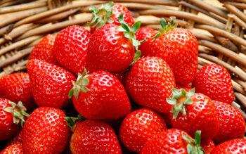 calidad aire fresas alava