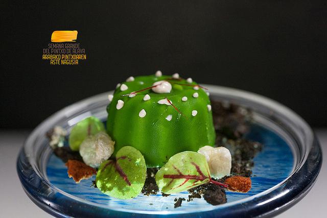 bonito cactus portalon