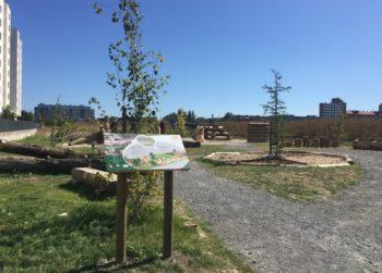 Borinbizkarra inaugura su parque naturalizado y Elejalde empieza a ver el suyo