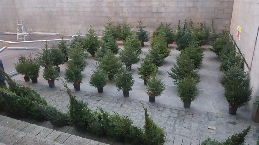 arboles navidad fueros