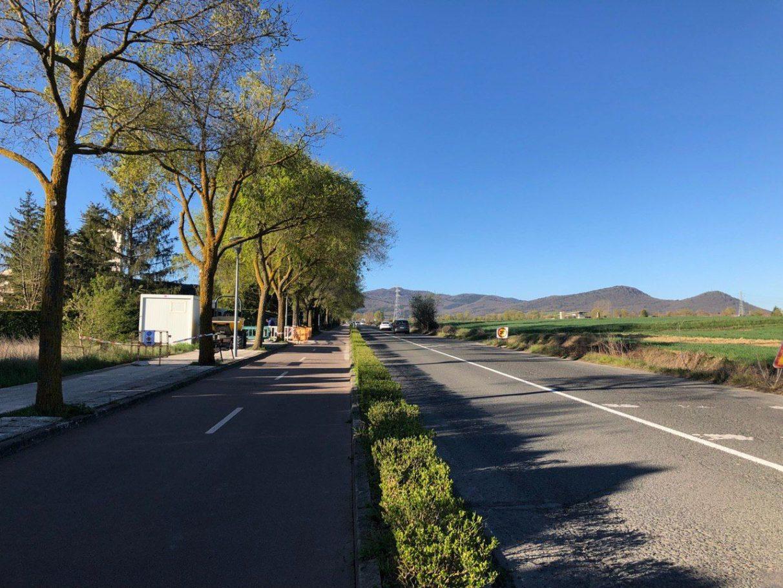 Operación para construir viviendas entre Portal de Lasarte y Armentia | Gasteiz Hoy