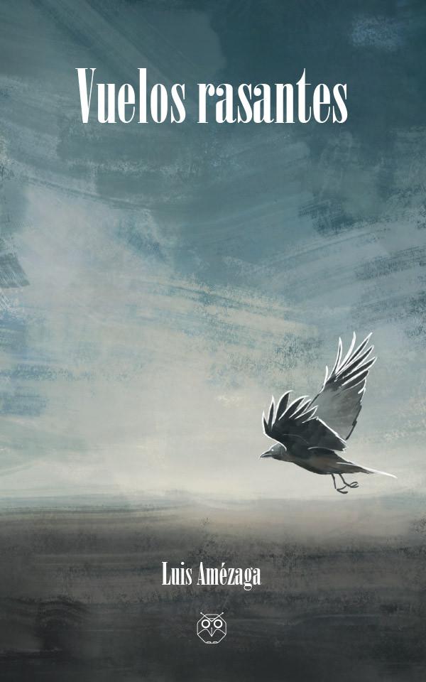vuelos rasantes luis amezaga