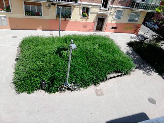 Bancos comidos por la vegetación en Castillo de Guevara
