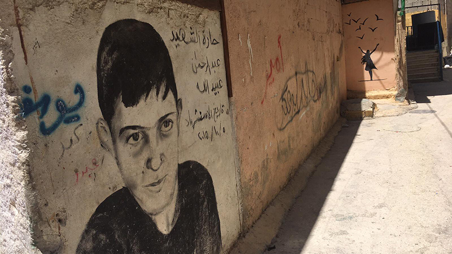 Palestina-realidad-conflicto-ddhh-vitoria