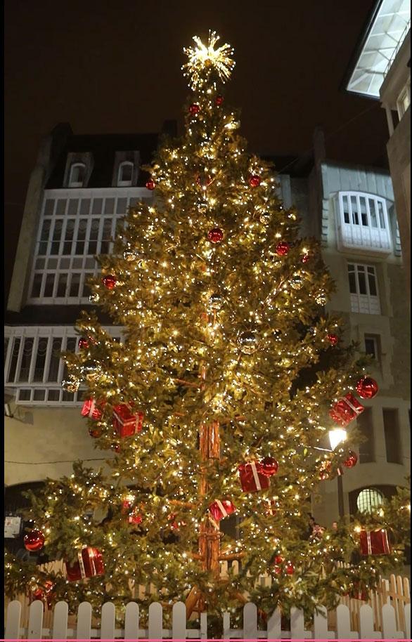 arbol navidad plaza del arca
