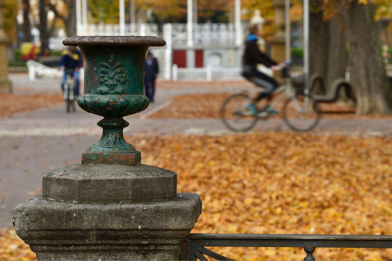 PNV y PSE se quedan solos en la defensa de la ordenanza de movilidad | Gasteiz Hoy