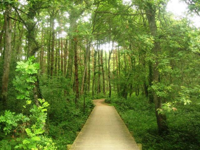 rutas-verdes-alava