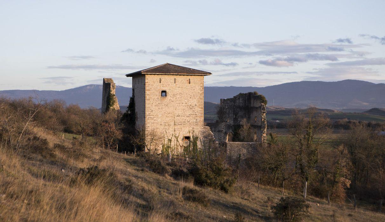 Castillo-guevara