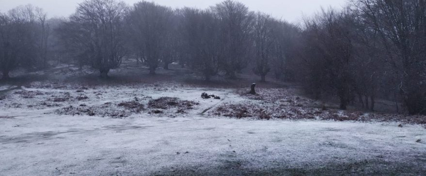 nieve vitoria alava marzo