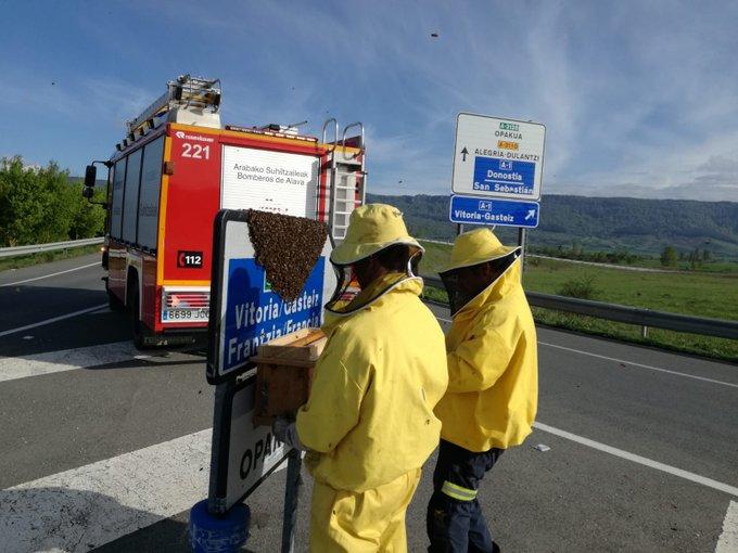 abejas bomberos de alava