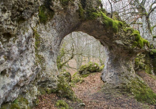 Entzia-Opakua: paseo entre laberintos, restos megalíticos y árboles centenarios