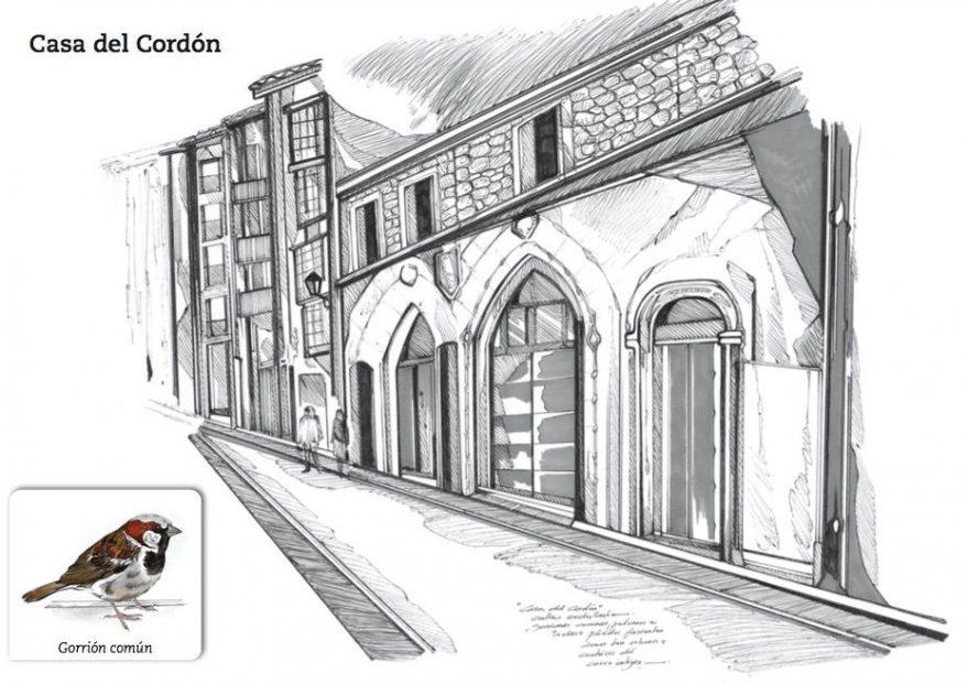 Gorrión - Casa del Cordón