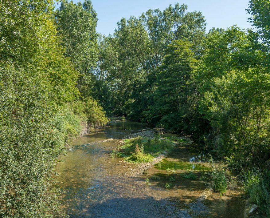 rio ayuda red natura