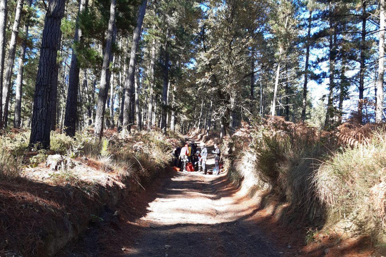 Un motorista atropella a dos personas en el monte y se fuga | Gasteiz Hoy