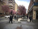 calle-gorbea-comercio-local-vitoria