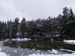 nieve en Vitoria-Gasteiz álava