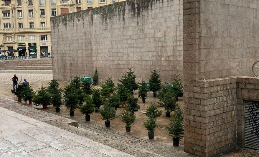arboles navidad vitoria