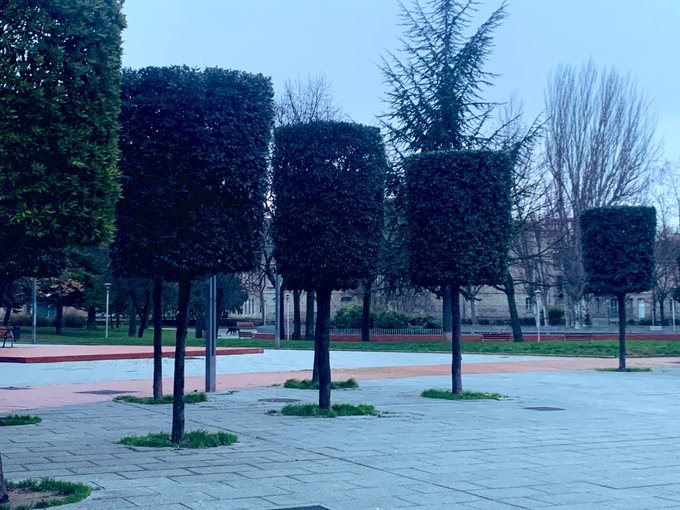 parque-norte-arboles-poda
