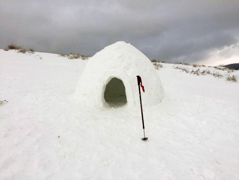 FOTOS: La nieve vuelve a teñir Vitoria y Álava de blanco   Gasteiz Hoy