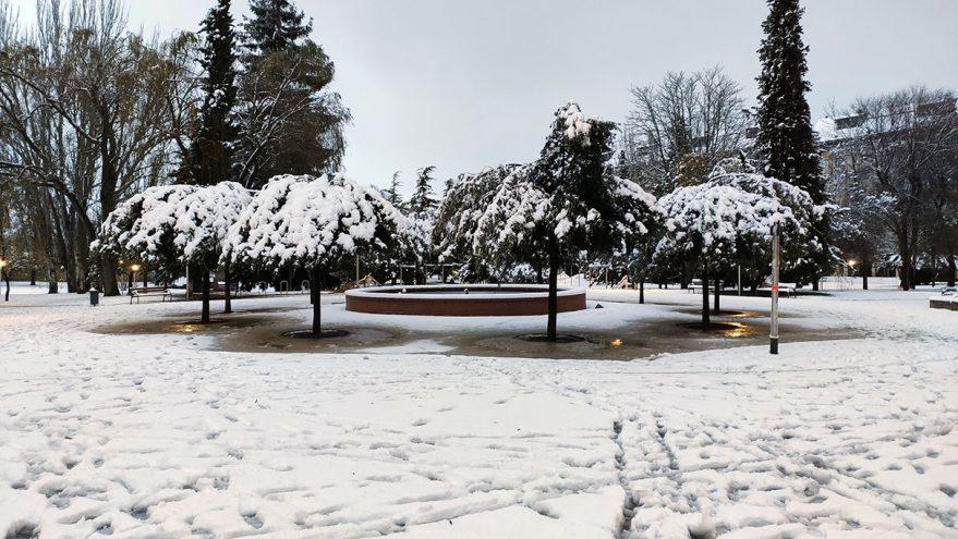 nieve vitoria arboles