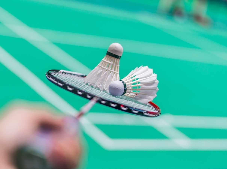 torneo nacional badminton vitoria